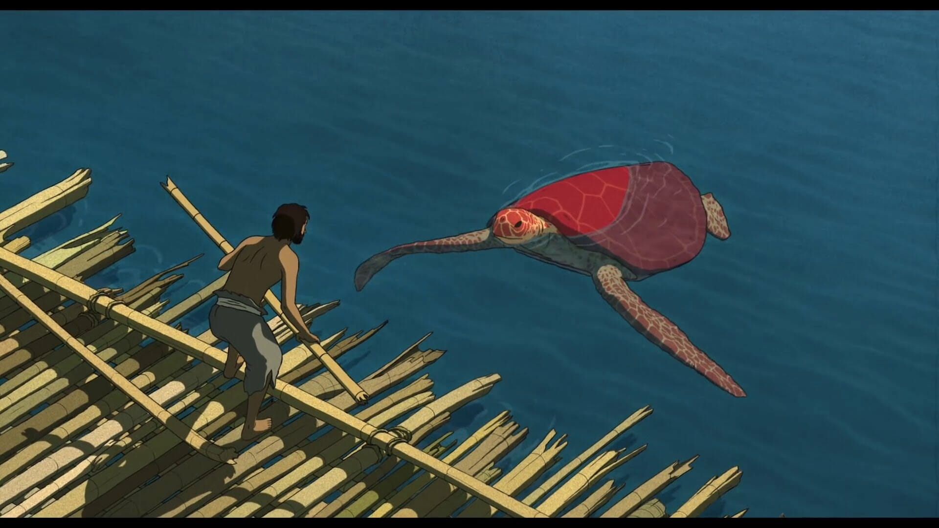 The Red Turtle Review Viff 2016 Bagogames